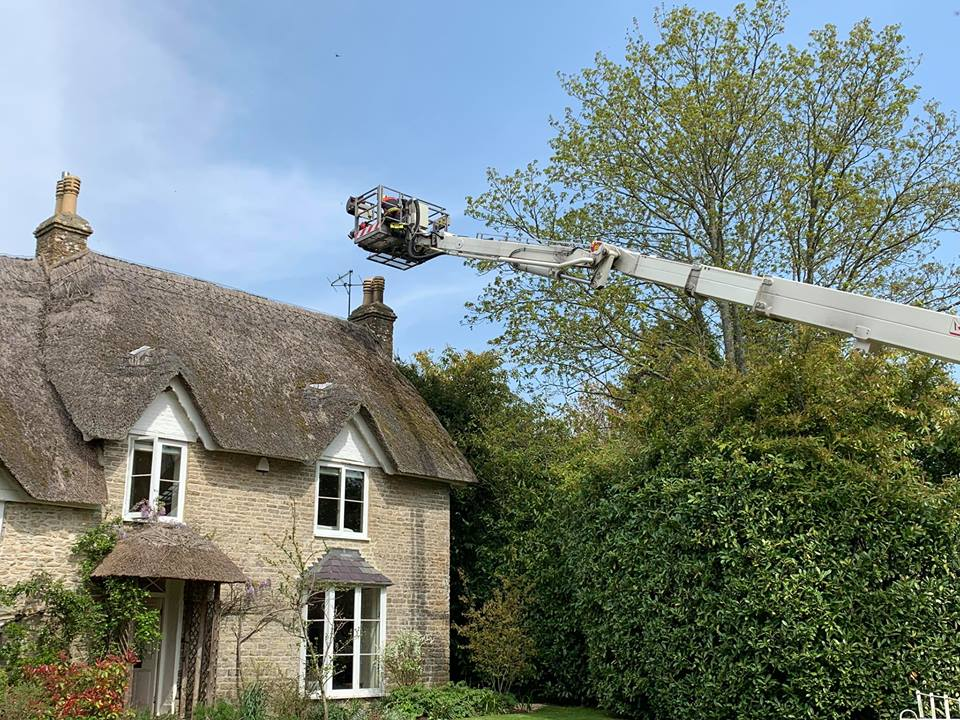 Thankfully the chimney fire did not spread to the thatch